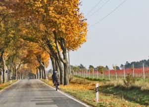 Rad und Land